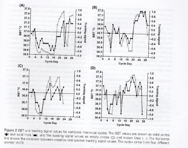 Basaltemperatur - BBT - Triggs Analyse
